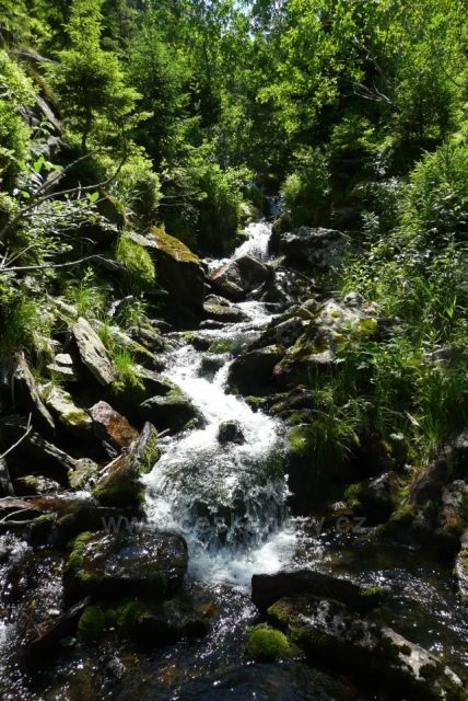 Potok Jezerná