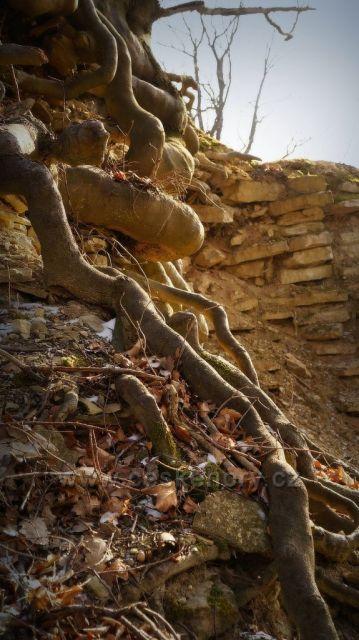 zřícenina hradu Výrov