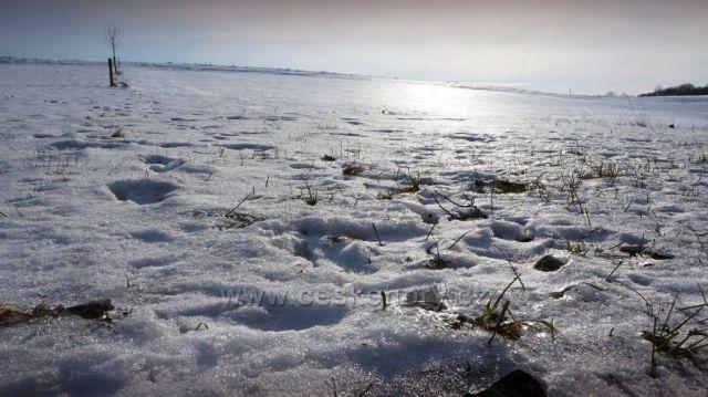 co s tím sněhem ?