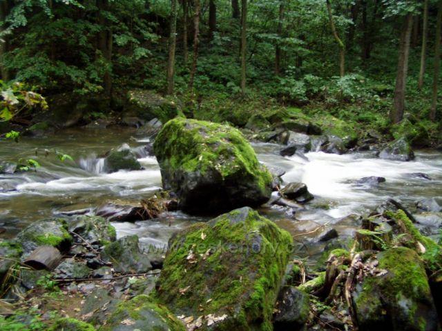 Řeka Doubrava u Mladotic.