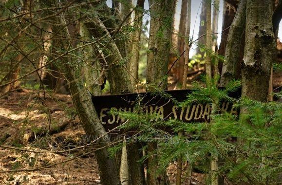 Lesníkova studánka