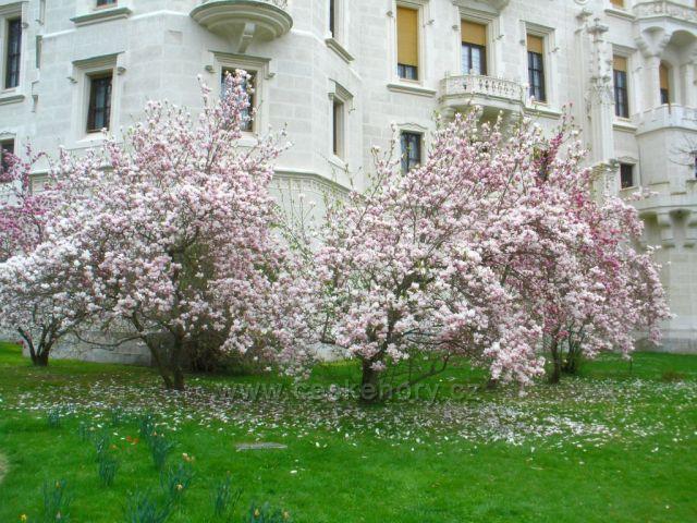 Jaro na českobudějovicku