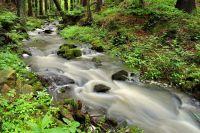 Kamenný potok v údolí řeky Doubravy (Chotěbořsko)