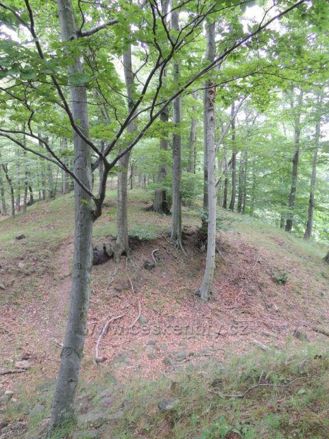 zřícenina hradu Alberk
