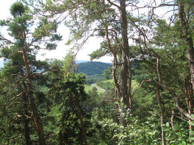 Pohled od hradu Rabí do šumavského podhůří Autor: Marcela Zajíčková        České hory