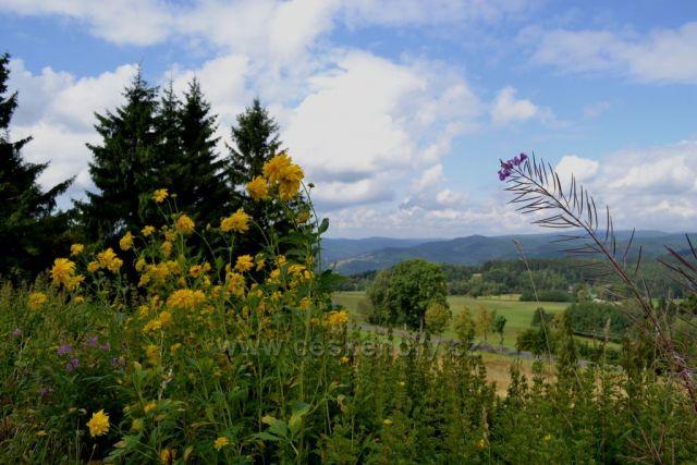 Jizerské hory - pohled od Příchovic