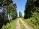 Cesta od chaty Vendlovky