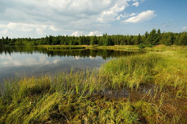 Rudolický rybník