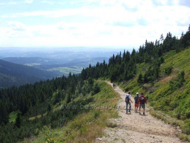 cesta od Hančeho a Vrbaty
