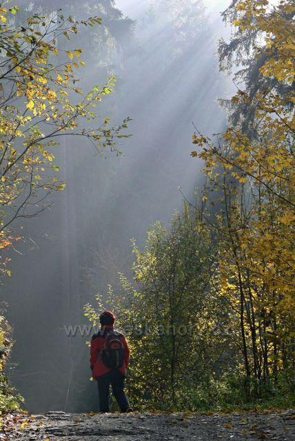 Podzimní slunce ve Šp.mlýně