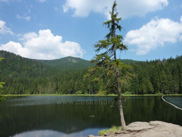 Velké Javorové jezero