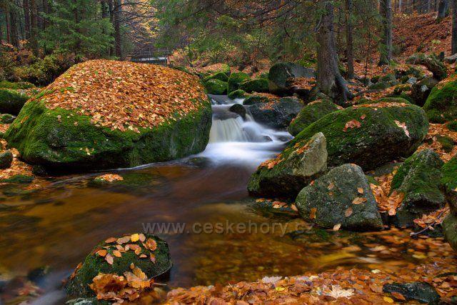 Jedlová - krásná říčka s mnoha vodopády a divokou krajinou.