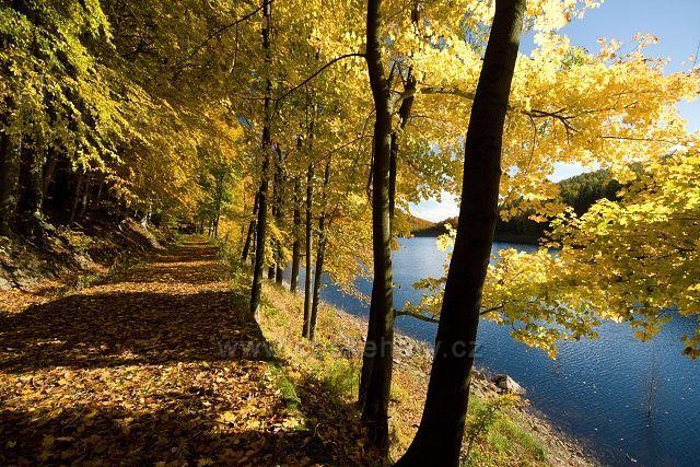 Cesta kolem přehrady