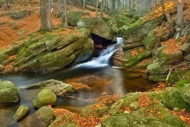 Podzim na Černé potoce.