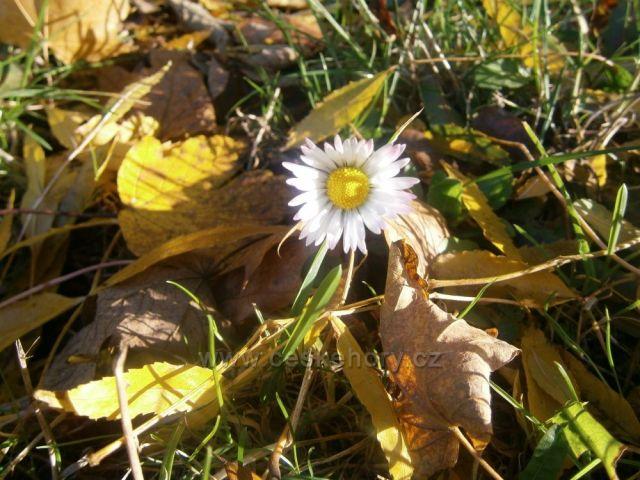 podzim nebo jaro?