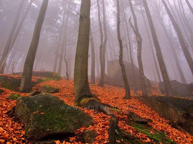 Podzim v Jizerkách - Tanvaldský Špičák.