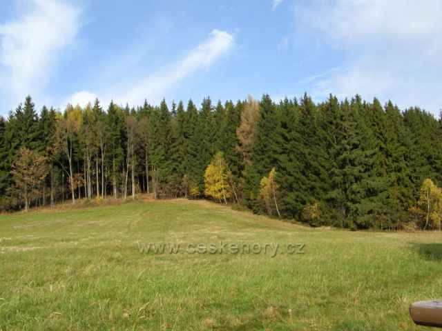 U lesa