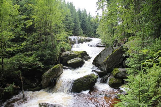 Řeka Jizera foceno: červenec 2013