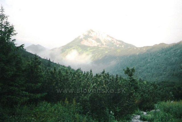 Sivý vrch (ze sedla Pálenica)
