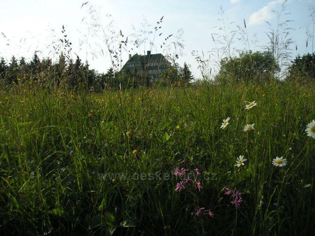 Masarykova chata -Šerlich