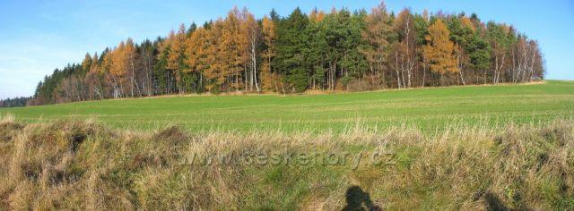 Podzim u osady Zubří u Trhové Kamenice.