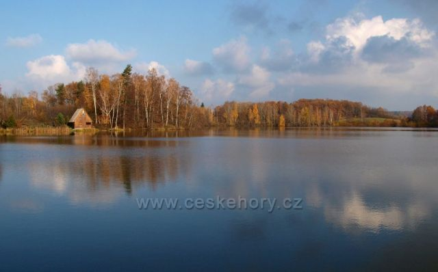 Rybník Žďár u Havlovic na Chrudimcku