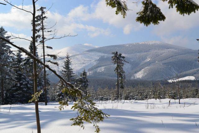 Pohled na Sněžku od Horní Malé Úpy