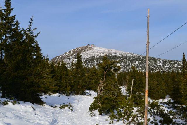Pohled na Sněžku cestou z Růžové hory