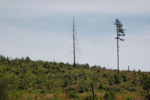 Smutný pohled na Vysoké Tatry - Starý Smokovec