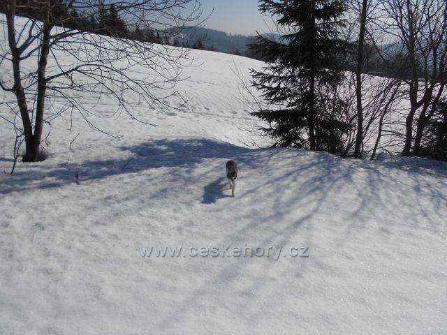 sníh, slunce - nádhera
