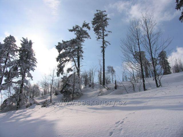 Zima v Petrovičkách