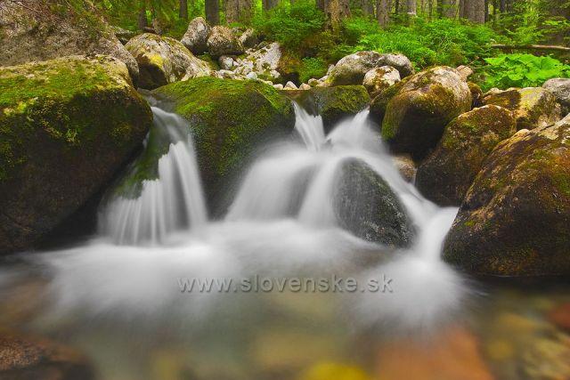 Tatranská voda