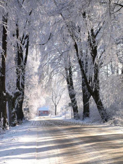 Zima na Srní