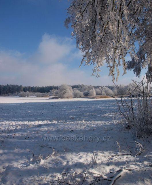 Zima u Srní