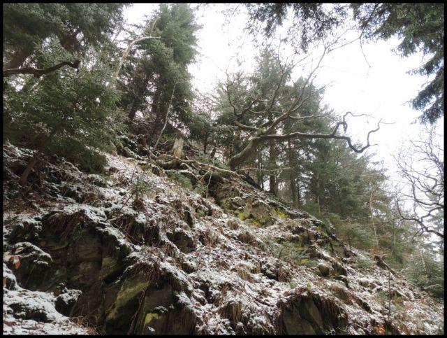 Skalní srázy Bezručovo údolí