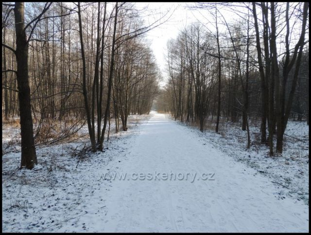 pěšina - cyklostezka Bezručovo údolí
