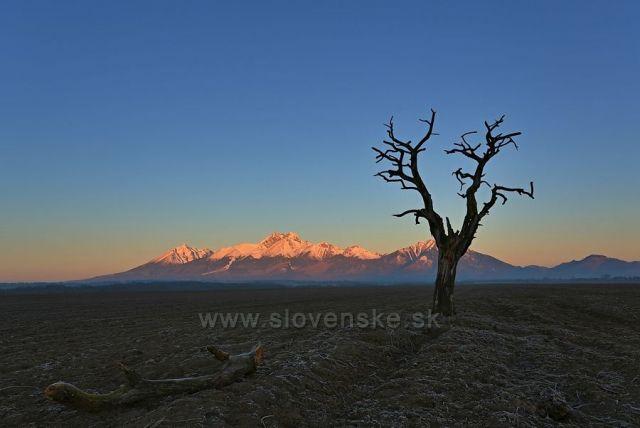 svítání v Tatrách