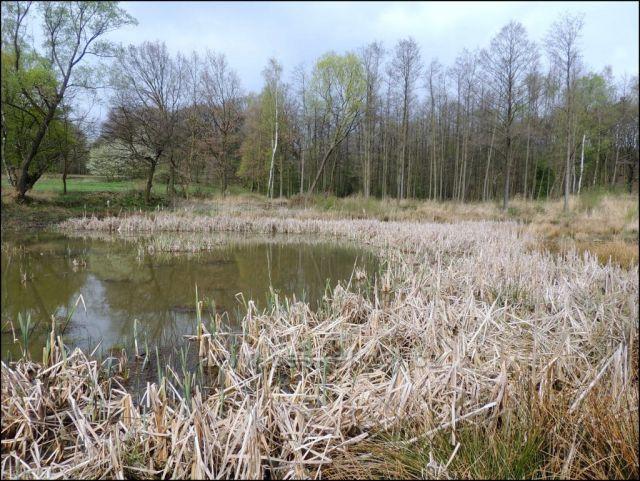 Ahníkov - šachta,panský rybník