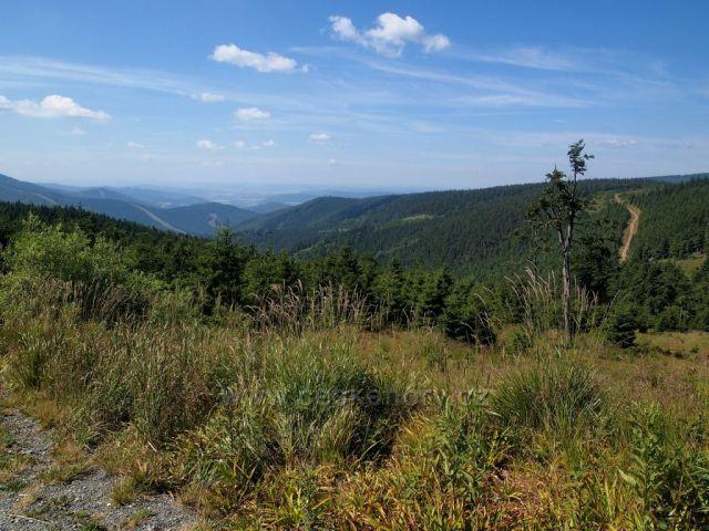 Hrubý Jeseník - pohled směr Šindelná hora z úseku Červenohorské sedlo - Červená hora (červená TZ)