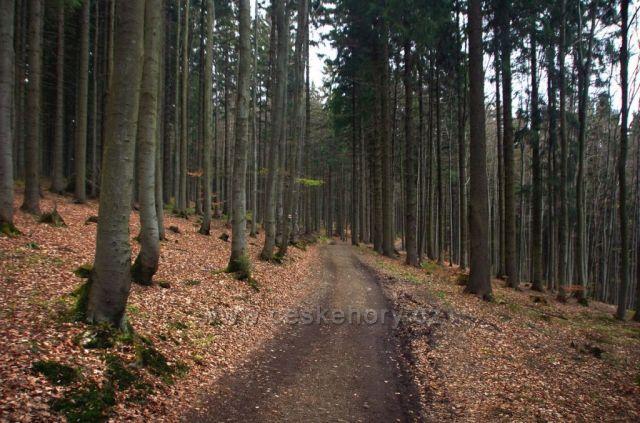 trasa z Horní Lomné na Slavíč