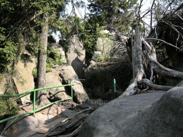 procházka Stolovými horami