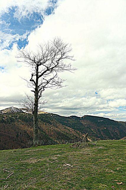 výhledy cestou na Borišov
