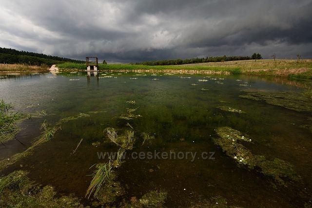 Rybníček nedaleko Žebráckého rohu