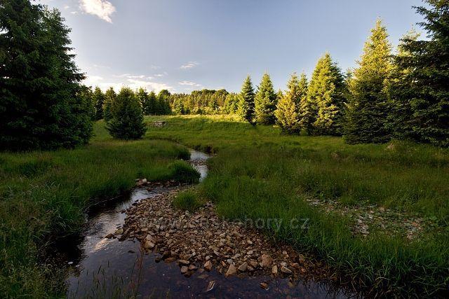 Flájský potok u Vilejšova