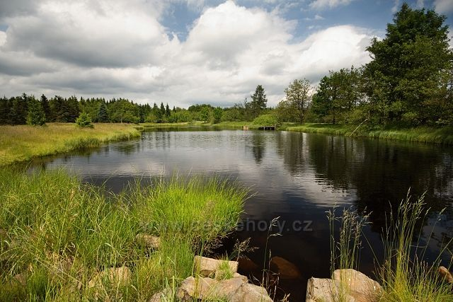 Nový rybník