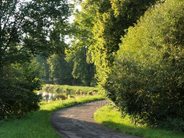Cesta k Havlovickým rybníkům