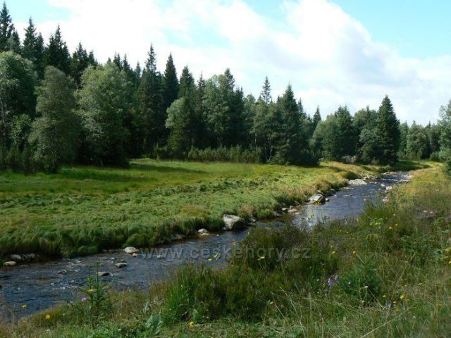 Šumava - okolí Modravy