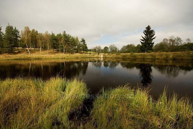 Načetínský rybník