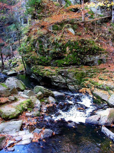 Podim v údolí Doubravy
