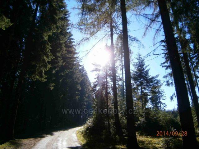 cestou pro pěší - na Lipenskou rozhlednu